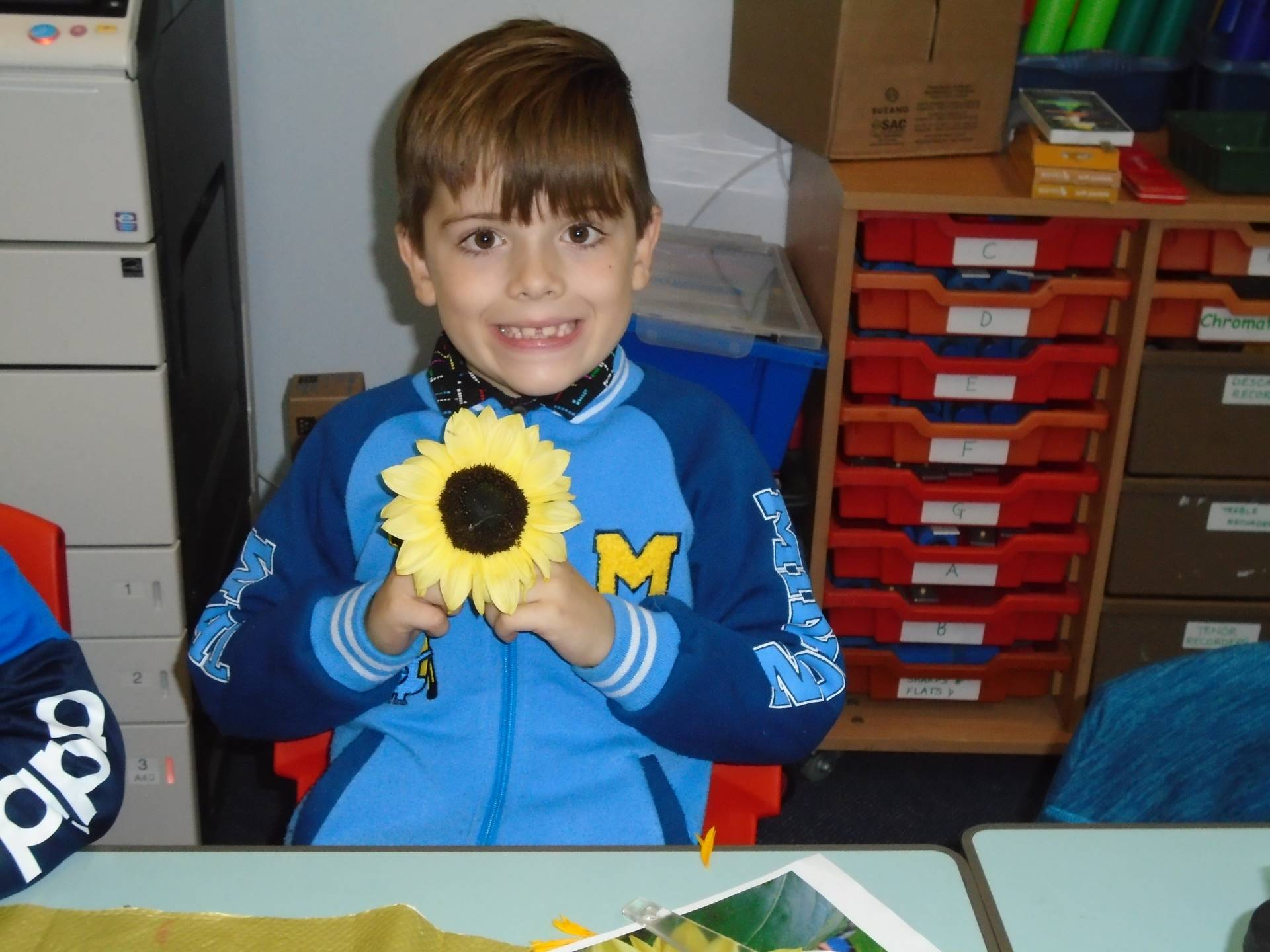 Child holding a sunflower